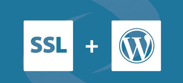 راهنمای کامل نصب گواهی اس اس ال ( SSL ) برای یک وب سایت وردپرس ( WordPress ) و لود سایت به صورت HTTPS