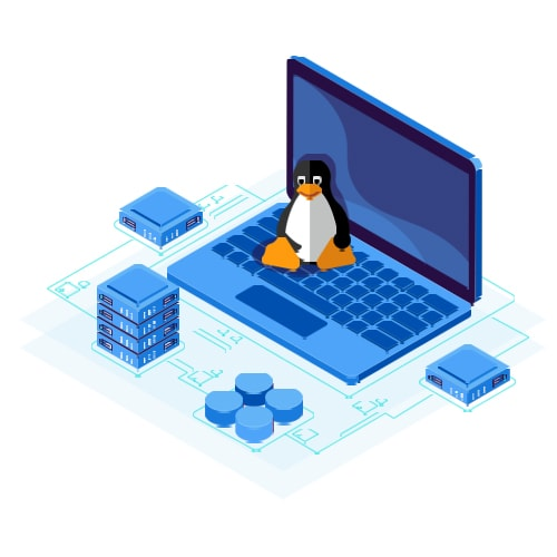 هاست لینوکس چیست